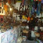 Shop 17 - Fanny