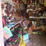Shop 6 - Winifred